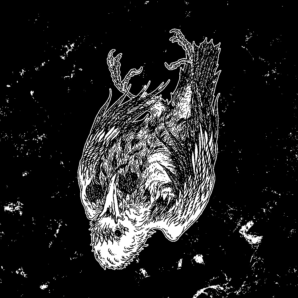 Old Skin releases new EP via SFG DIY and COF Records